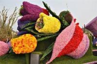 Фотография Цветочный Барон