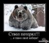 Фотография Bear52